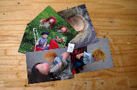 postcards set #4