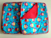 Double flannel Red and Blue Owl Unpaper towels or Napkins