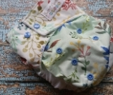 One Size AI2 Cloth Diaper Springtime Songbirds 15-40 lbs Limited Edition