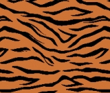 Tiger Fabric Sample Pre-Order
