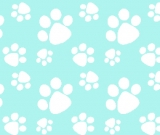 1yd cut R-24 Fetchy mint Paws Swim